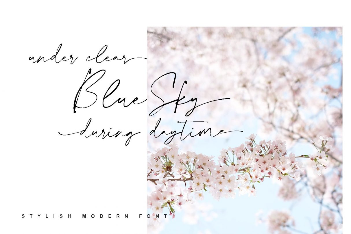 Modern Calligraphy, Calligraphy Font, Stylish Font, Modern Font, Minimalist Font, Wedding Font, Hand Written Font, Logo Font, Minimalist Script, Script Font, Elegant Chic Font, Elegant Font, Wedding Logo Font, Wedding Script, Lovely Font, Script, Realistic, Branding, Logo, Wedding, Stylish, Casual, Poster, Handwriting, Written, Pen, Ink, Fashionable, Fun, Classy, Elegant, Natural, Writing, Love, Real, Authentic, Cool, Feminine, Girly, Fresh, Magazine, Write, Photography, Media, Bookcover, Fast, Populer, Page One, Handpick Up, Vacation, Quick, Cool Fonts, Love Fonts, Wedding, Fonts, Fun Fonts, Elegant Fonts, Calligraphy Fonts, Logo Fonts, Modern Fonts